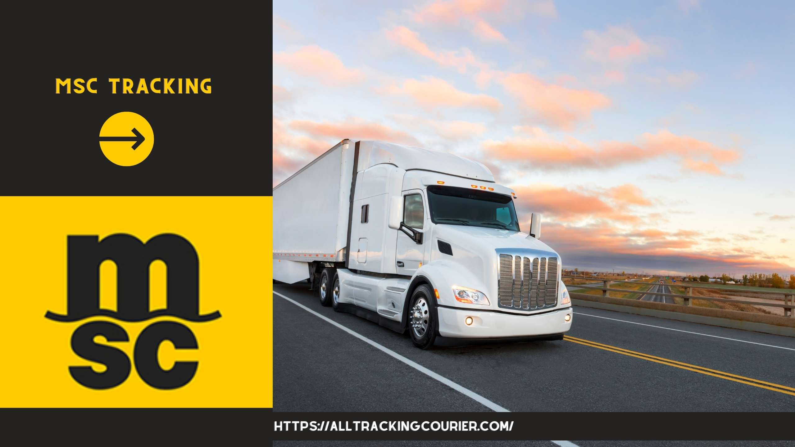 MSc Tracking -  Track Container Live - Alltrackingcourier